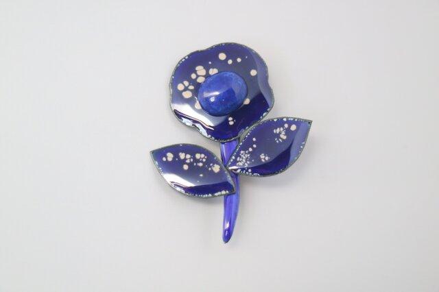 艶めく藍の花の画像1枚目