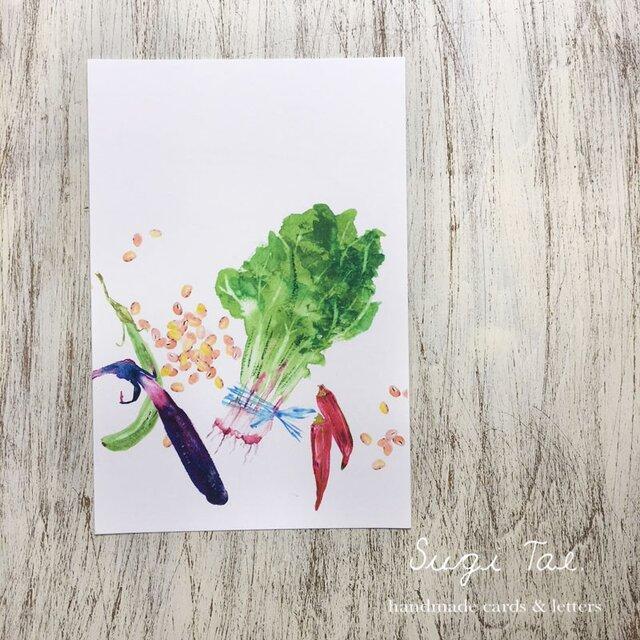 Fresh Vegetables 青菜のカードの画像1枚目