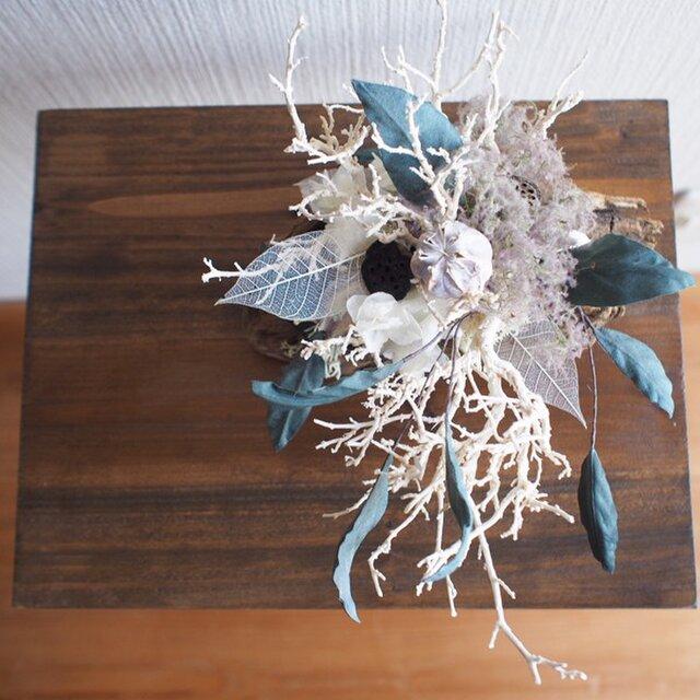 オブジェ*Driftwood-eucalyptusの画像1枚目