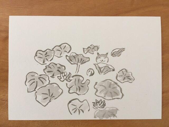 絵葉書/ポストカード <猫と蓮>の画像1枚目