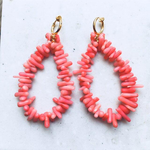 ピンク珊瑚フープリングイヤリングの画像1枚目