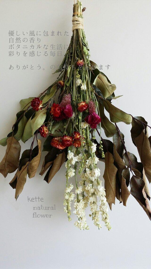 優しい風シリーズ ラークスパーの花飾り スワッグ♪の画像1枚目