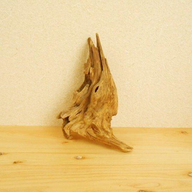 【温泉流木】薄く繊細な流木美 流木オブジェ 流木インテリアの画像1枚目
