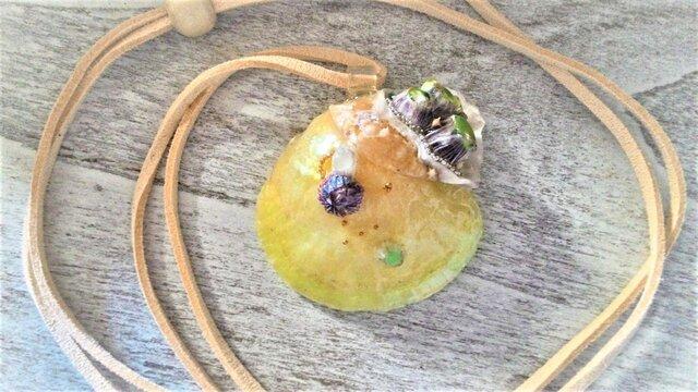 【sale】蓄光☆ナミマガシワとフジツボの封入標本ネックレスの画像1枚目