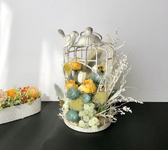 Birdcage Dryflowerの画像1枚目