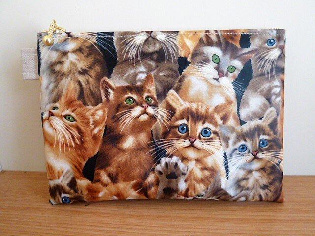 リアル猫ちゃんのミニポケット付きラミネートポーチの画像1枚目