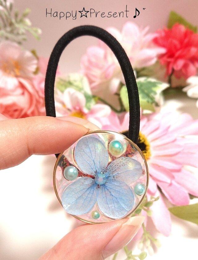 再販!本物の紫陽花の標本キラキラ✴️circleヘアゴム❤️✨ 送料無料 大人可愛い 花 夏 プレゼント ギフトラッピングの画像1枚目