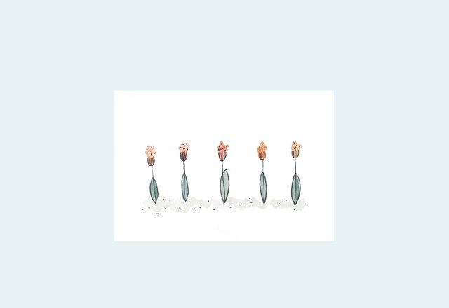 [A¥480] ポストカード¥3枚set :009番 「お花」の画像1枚目
