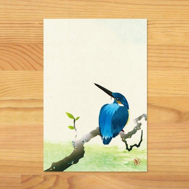 ポストカードU-【かわせみ】2枚セットの画像1枚目