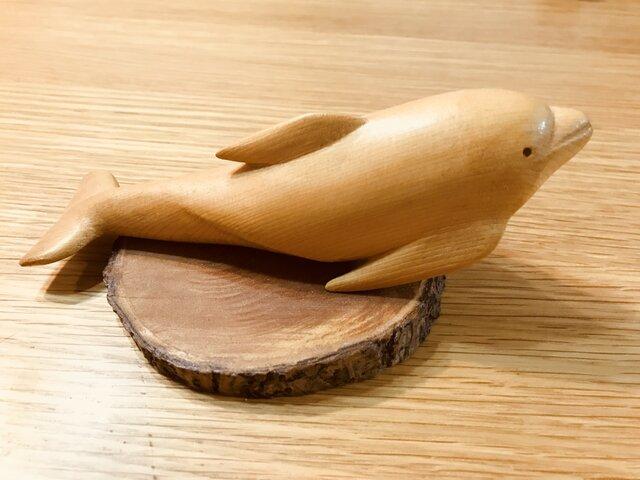 イルカの画像1枚目