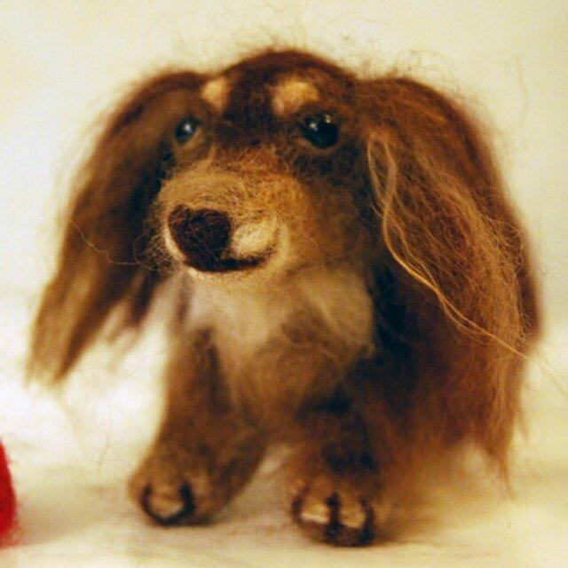 【ミニチュわん】オーダーメイド フェルティングドール,羊毛フェルト犬の画像1枚目