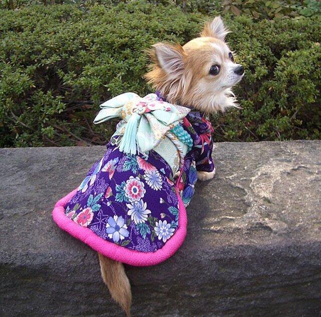 【犬着物】蝶 オーダーメイド 犬の着物 犬服の画像1枚目