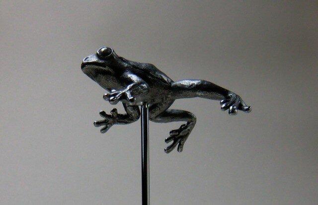 浮かぶ蛙の画像1枚目