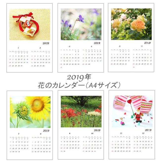 2019年度     花のカレンダー  A4サイズ縦版 の画像1枚目