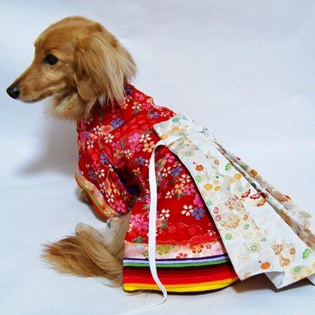 【犬着物】十二単 オーダーメイド 犬服 犬の着物 平安の画像1枚目