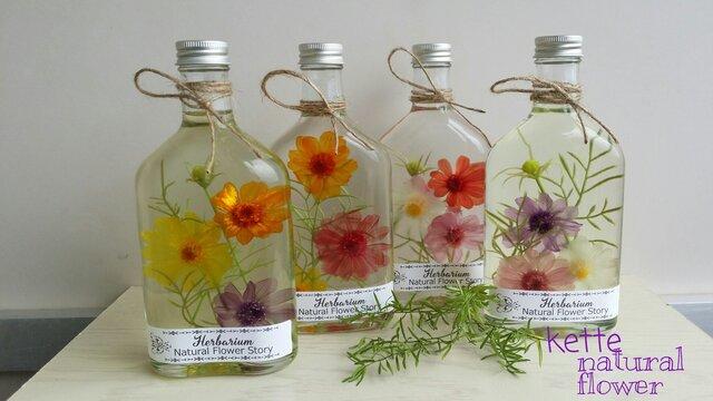 花物語 ジニアの三輪花びら 4種類から2本セット ハーバリウム♬の画像1枚目