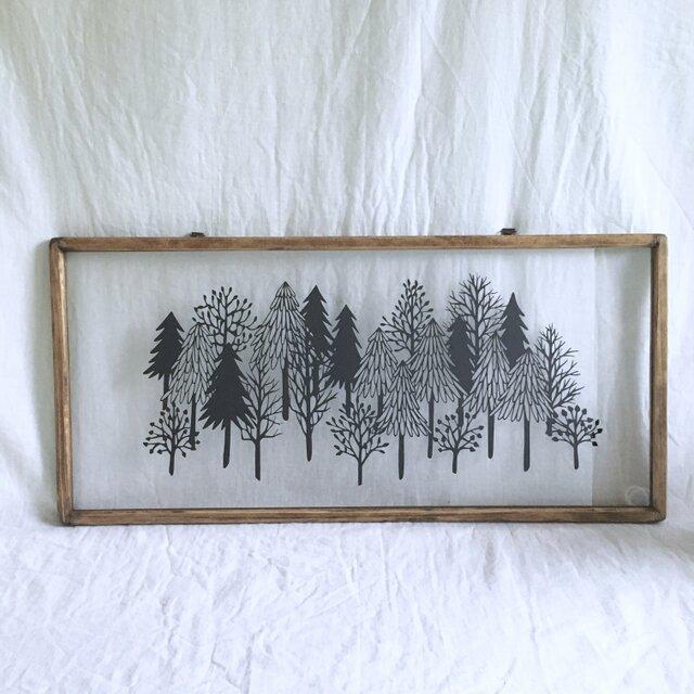「静かな森」の画像1枚目