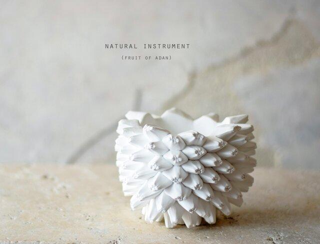 Natural instrument アダンの実(white)器のみの画像1枚目