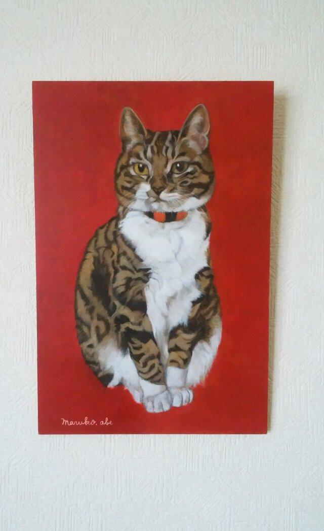猫イラスト「赤いぐりこ」原画の画像1枚目