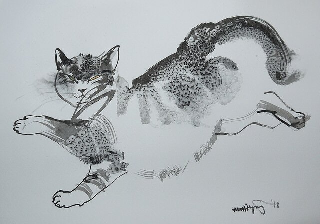 Lazy Cat 1 (墨絵、水彩画用紙、24,5cm×35cm)の画像1枚目
