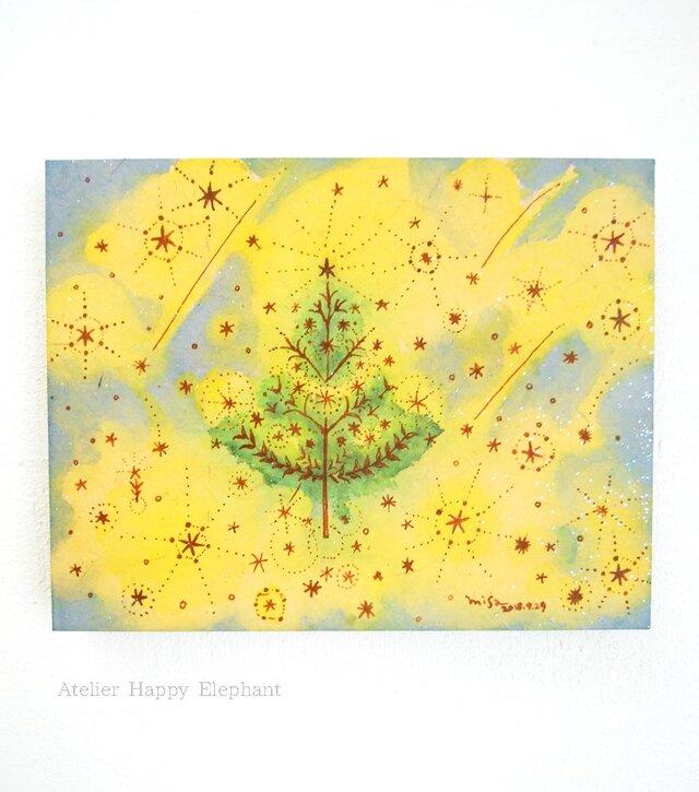 星の木【F0】の画像1枚目