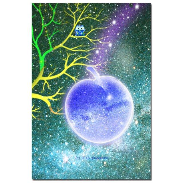 「フクロウと星空」 ほっこり癒しのイラストポストカード2枚組No.632の画像1枚目