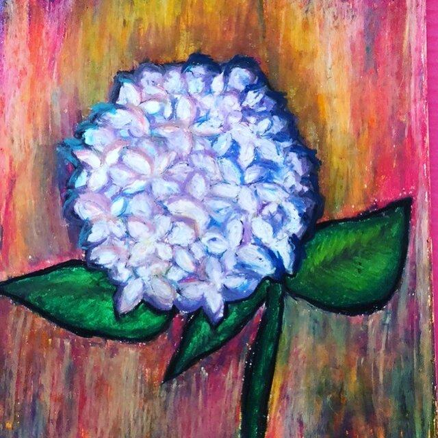 紫陽花の画像1枚目