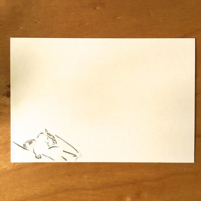 絵葉書/ポストカード <昼寝>の画像1枚目