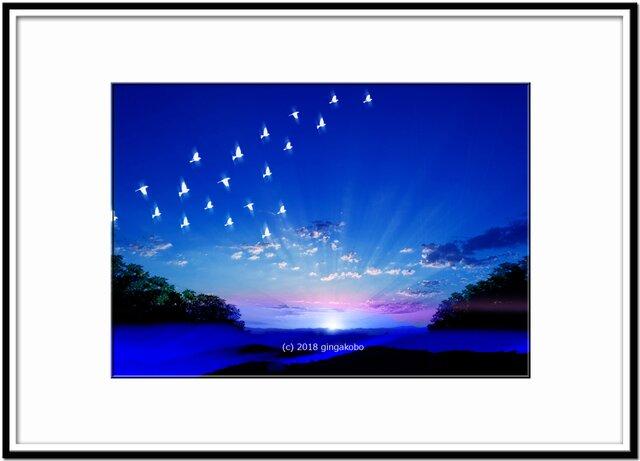 「朝陽に目覚めて」 ほっこり癒しのイラストA4サイズポスターNo.562の画像1枚目