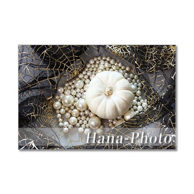 1344) 白いカボチャ(カスペリータ)のハロウィン ポストカード5枚組の画像1枚目
