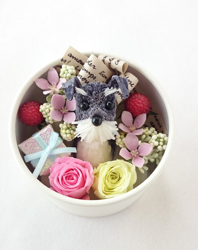 お花で作ったワンちゃん [ちいさな友達:ミニチュア・シュナウザーBOXアレンジ~」の画像1枚目