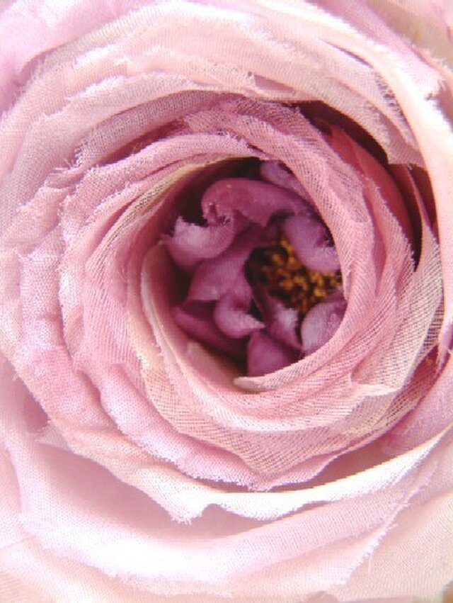 2種シルク使いの巻き薔薇ばら ピンクパープル * コサージュの画像1枚目