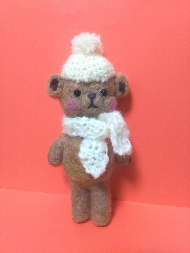 暖かそうなクマさんの画像1枚目