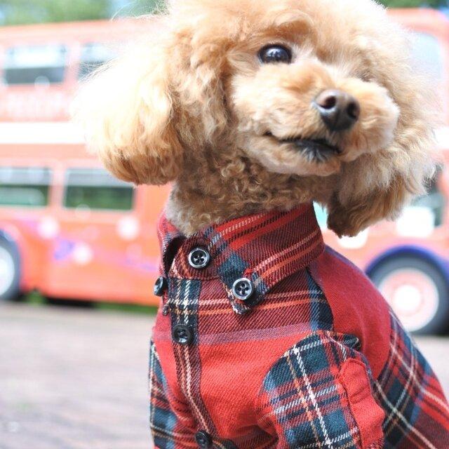 おしゃれな犬の服|ビエラチェックシャツ(レッド)|Sサイズの画像1枚目