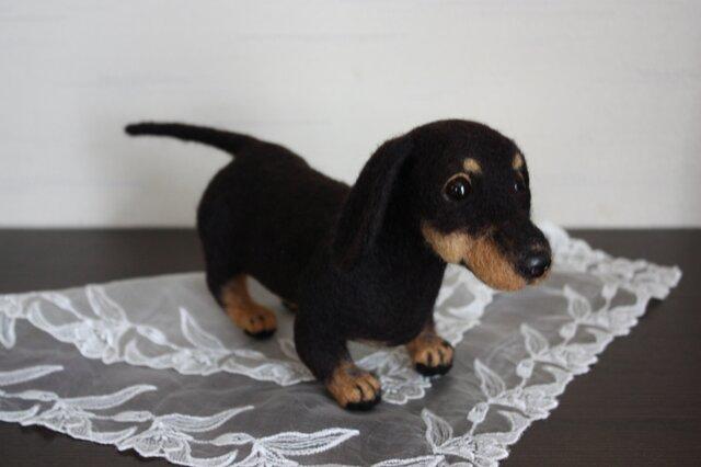 ブラタン ミニチュアダックス 幼犬。。。羊毛フェルトの画像1枚目