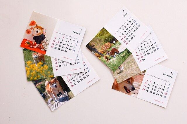 カレンダー2019(柴犬)の画像1枚目