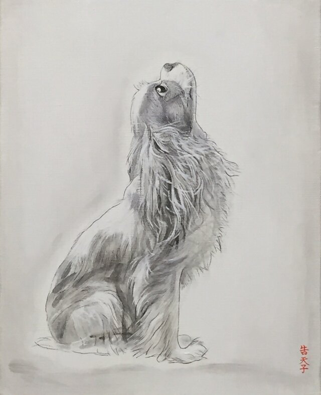 私の犬の画像1枚目