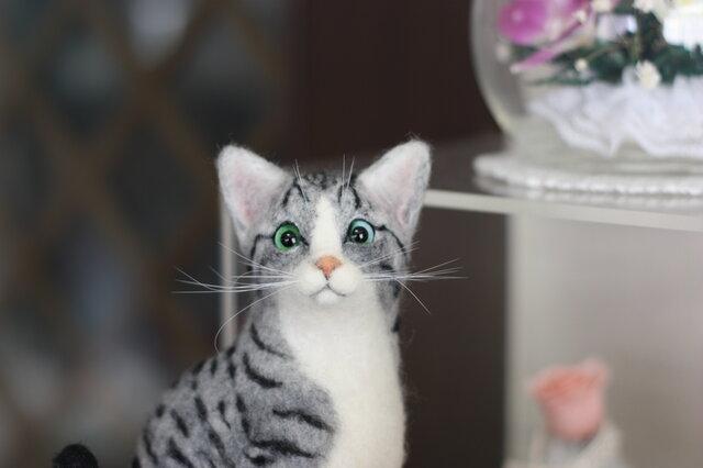サバトラ白猫。。。羊毛フェルトの画像1枚目