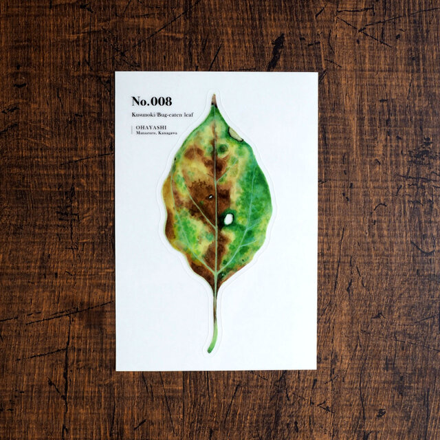 No.008 Kusunoki Bug-eaten leaf 透明ステッカーの画像1枚目