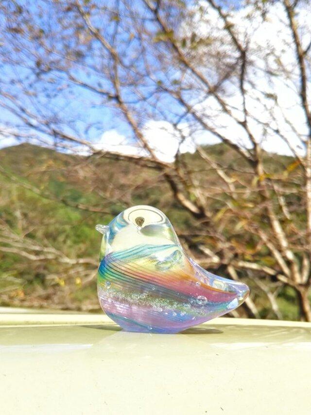 虹色の小鳥 SSの画像1枚目