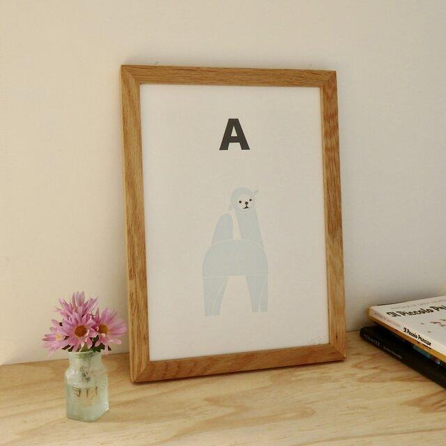 A for Alpaca A4サイズポスターの画像1枚目