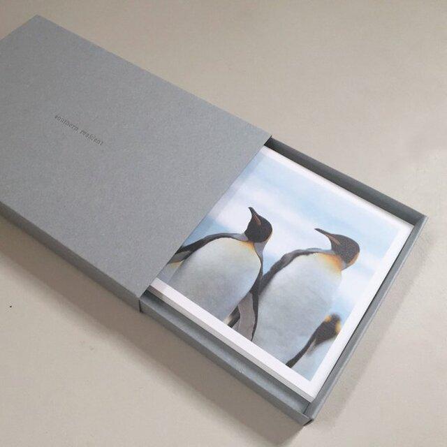 ペンギン達のポストカードセット(12枚入)の画像1枚目