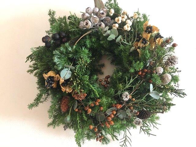 森の中の木の実のクリスマスの画像1枚目