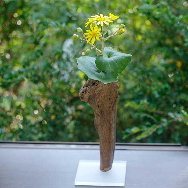 【送料無料】流木の花器、フラワーベース、18の画像1枚目