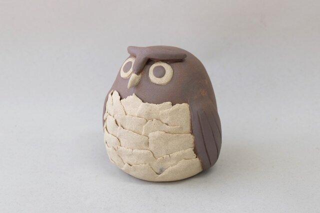 フクロウ (白茶)の画像1枚目
