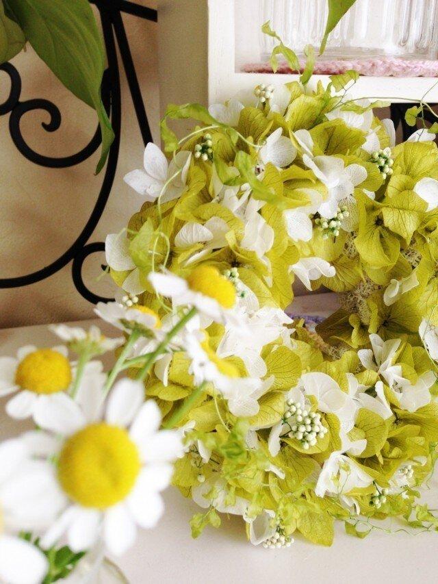 summer wreath・・・★の画像1枚目