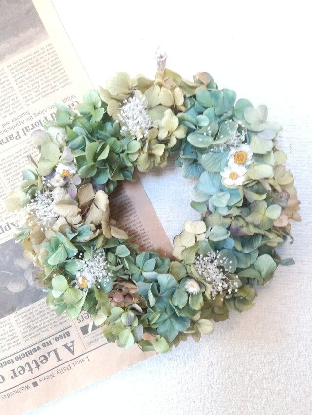 再販[送料無料]ドライフラワーリース◆あじさいと白いお花と、の画像1枚目