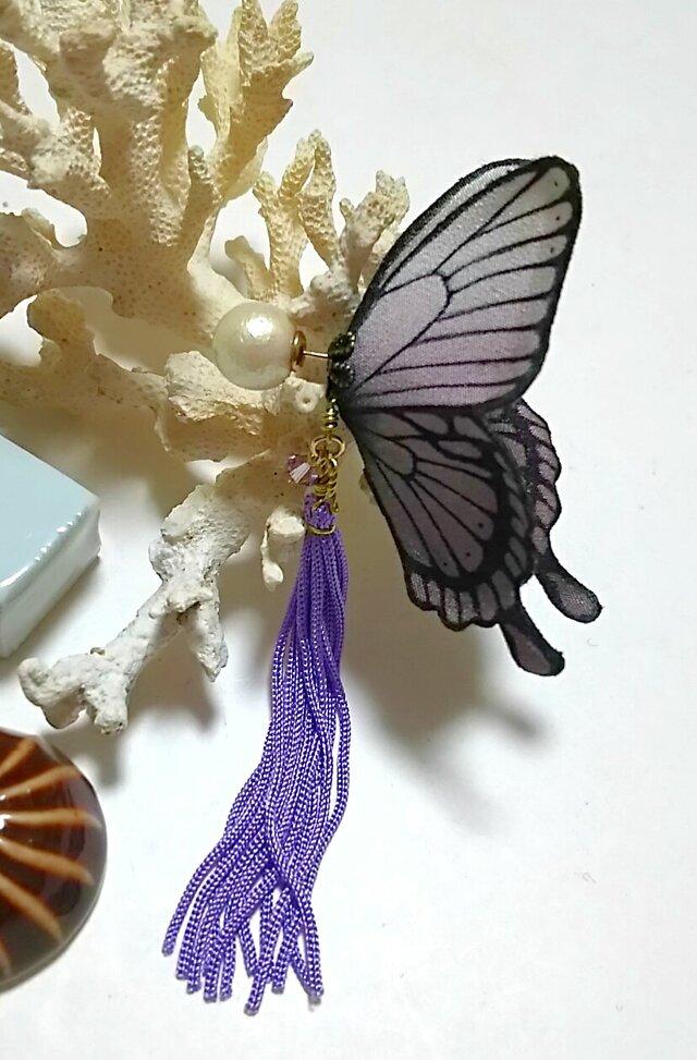 蝶のピアス 大 (アゲハ)の画像1枚目