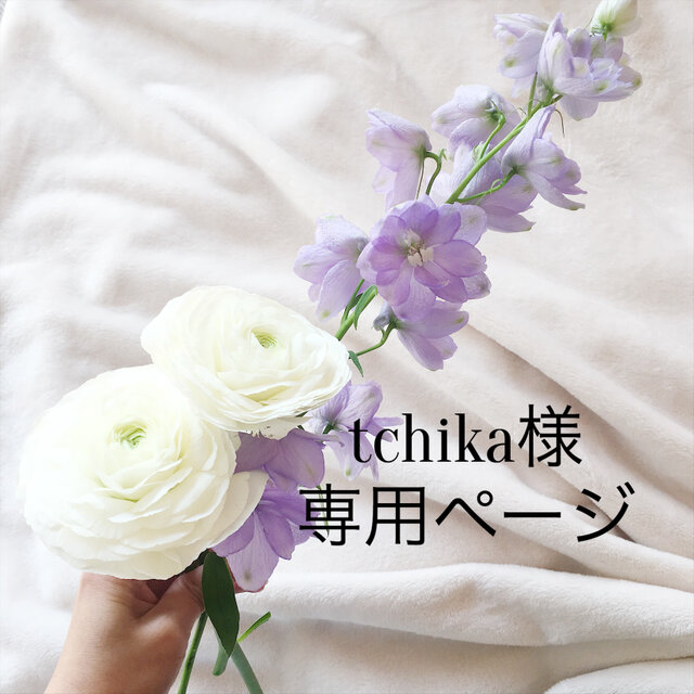 tchika様専用ページの画像1枚目
