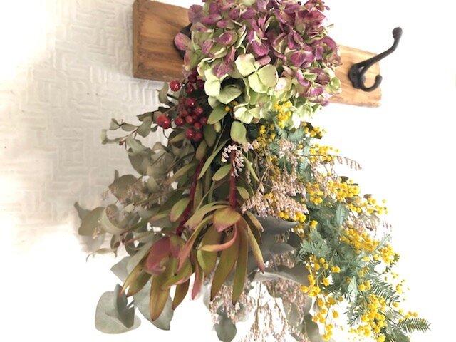 Mimosa & Hydrangea Lサイズの画像1枚目